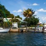Coconut Groove shopping e buon cibo nel distretto tra i piu' trendy di Miami