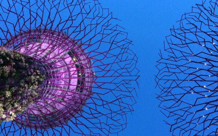 Singapore la citta' del futuro (foto-gallery)